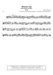 Munster Jig (Búachallán Buídhe) - 1