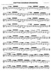 Scottish Zanzibar Orchestra - 1